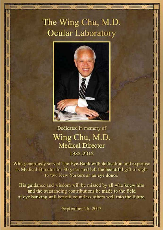 Doctor Plaque, Doctor Plaques, photo Doctor Plaque